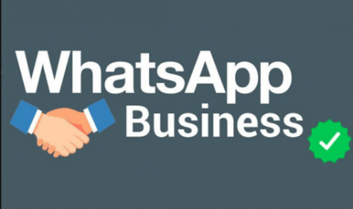 whatsapp business di cosa si tratta